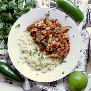 Bowl of salsa bbq chicken thighs with cauliflower rice..