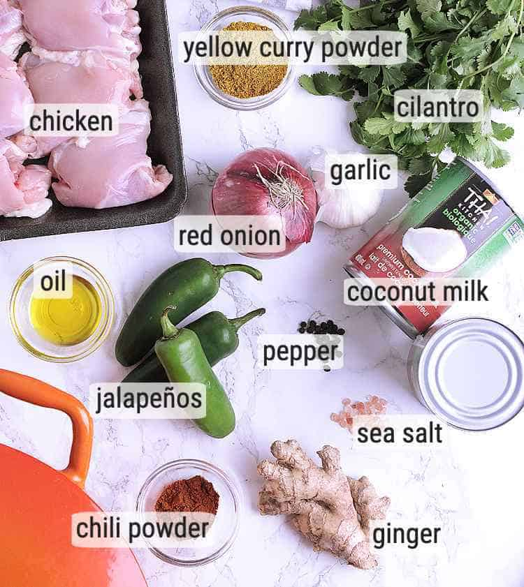 All ingredients used in this Keto Thai Curry Chicken.