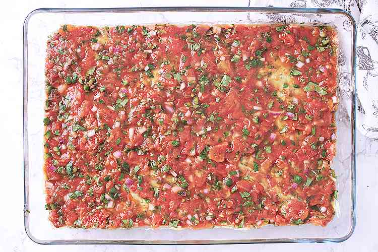 Salsa layer.