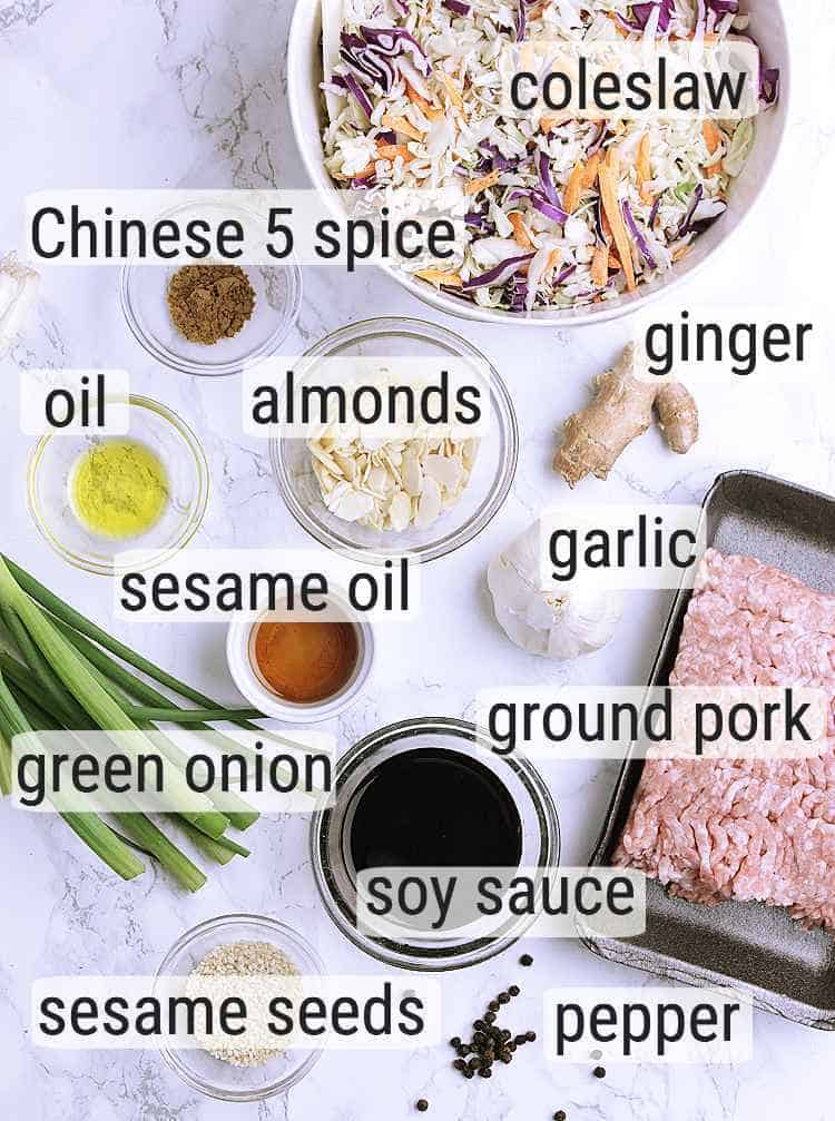 All ingredients used to make Keto Egg Roll in a Bowl.